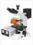 Микроскоп люминисцентный Альтами ЛЮМ 1